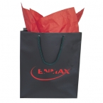 Promotional products: GIFT BAGS & TISSUE PAPER X-SMALL