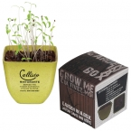 Promotional products: GROW YOUR OWN PLANT KIT
