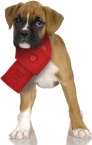 Promotional products: Fleece Pet Scarf